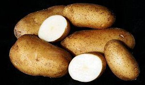 potatoes whole and cut showing white interior, on black background