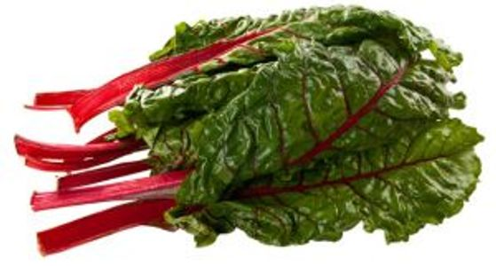 a bunch of deep green swiss chard with red stems, clean on a white background