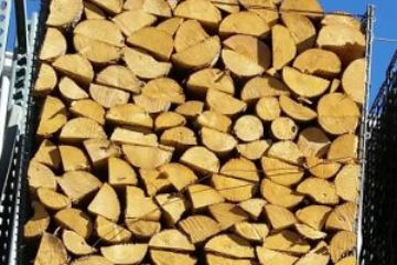 Wondering where to buy firewood in NoCo? Visit Koi Lagoon