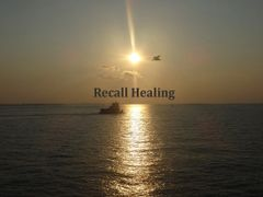 1 Hour Recall Healing Session