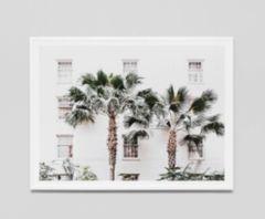 Palm Resort Print