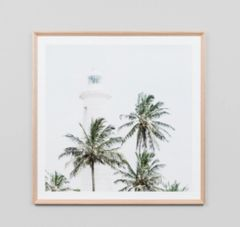 Tropical Light House