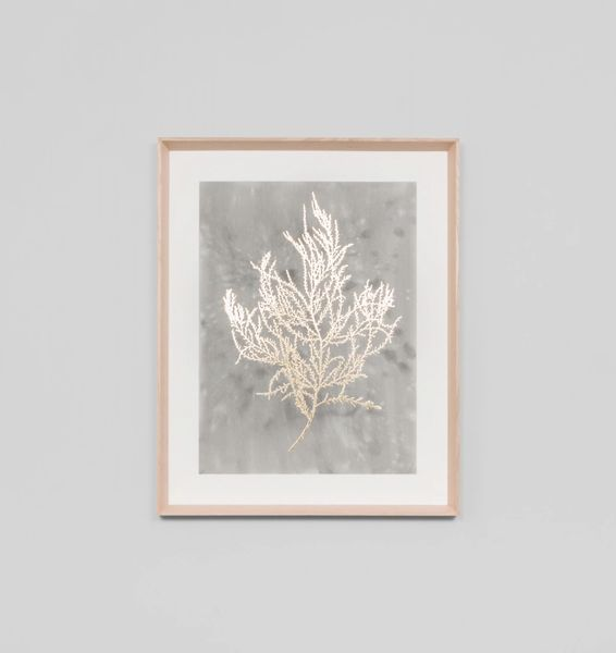 Gold Foil Sea Fern 1