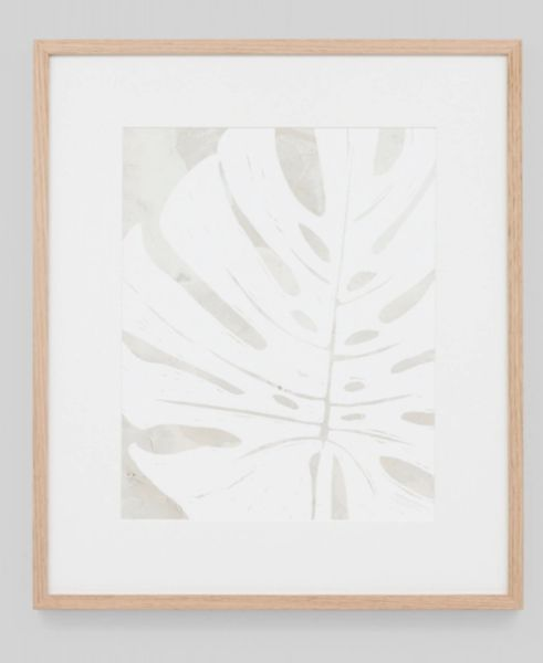 Tropical Silhouette Leaf Framed Print