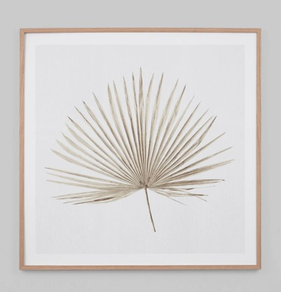 Verano Palm Print