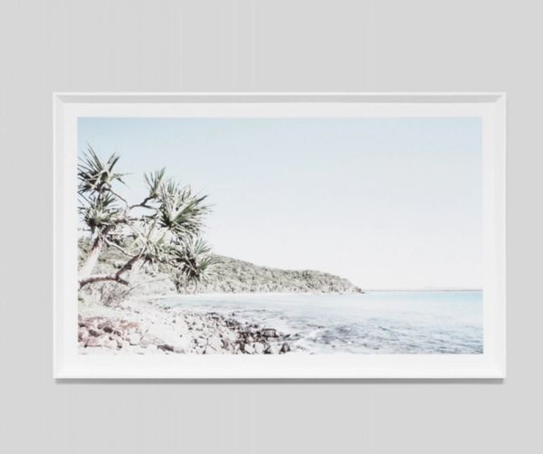 Tea Tree Bay Framed Print