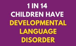 Developmental Language Disorder DLD