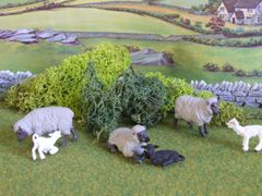 JSMLS Small Pack of Mixed Green Lichen for Hedges Etc by Javis