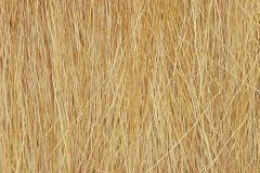 Harvest Gold Field Grass by Woodland Scenics WFG172