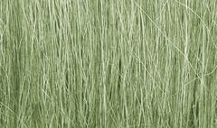 Light Green Field Grass by Woodland Scenics WFG173