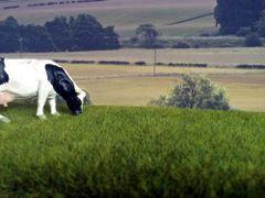 6mm Meadow Grass Mat by Noch N00402