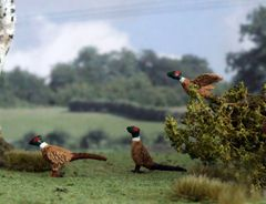 Pheasant Animal Sculpture 1:32 Scale by HLT