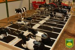 BT2099 10 x Metal Cow Cubicle Rails - Doubles by Brushwood 1:32 Scale