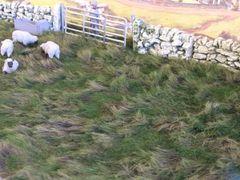 Rough Pasture Grass Mat by JG Miniatures TM3