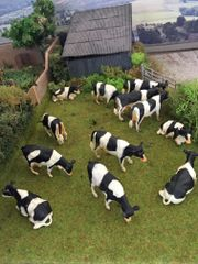 *SPECIAL* 12 x Freisian/Holstein Cows 1:32 Scale by Kids Globe 517929