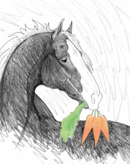 Blank Inside Card: Horse holding carrots as a gift- Item # Blank Carrots