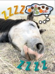 Birthday Card: ZZZZZZZZ - Item# GC B Dreams