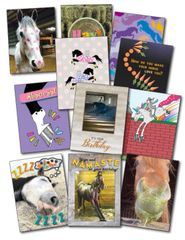 100 MIXED Card Pack - 100 Best Selling Mixed Cards: Birthday, Sympathy, Get Well, Thinking of you - Item # RP- 100 Mixed Pack