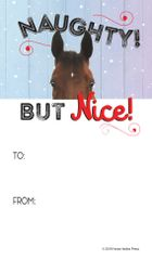 Gift Tags in BULK: Naughty but Nice! - Item # GT X BULK Naughty