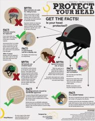 FREE pdf of the Helmet Safety Poster