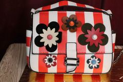 5019 Double Bag Red Striped Poppy Runway Embellished Purse Handbag Crossbody