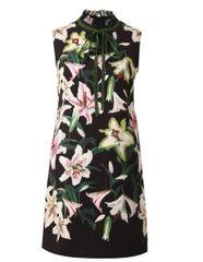 6216 Runway 2019 Beaded Lily Flower Print Elegant Black Mini Dress