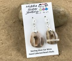 Conch Shell Earrings - CESH10