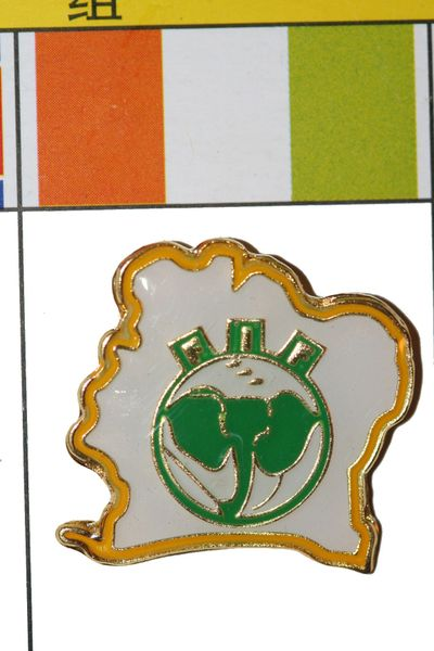 "IRELAND - FIFA WORLD CUP SOCCER LOGO LAPEL PIN BADGE .. SIZE : 1 1/8"" X 1"" INCHES .. NEW"