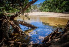 River in Sr-Lanka