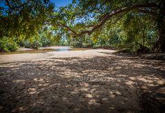 River Yala