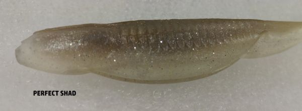"""Baby Swayback Swimmer 3.25"""" - Perfect Shad #15"""