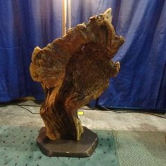 Arbutus Root Sculpture