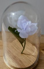 Glass Domed White Paper Rose -standard