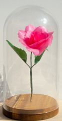 Glass Domed Pink Rose- large