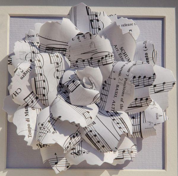 White sheet music rose