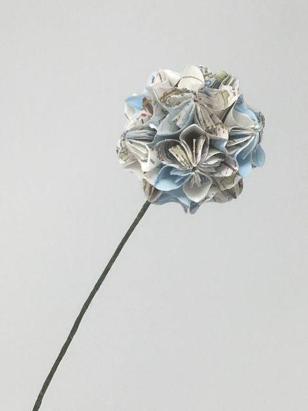 Flower head - Map