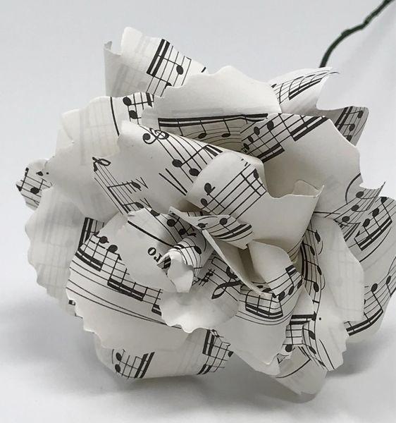 Sheet Music Rose - single stem