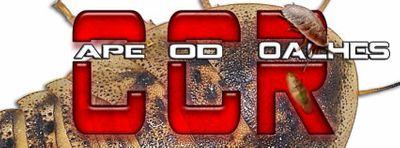 Cape Cod Roaches