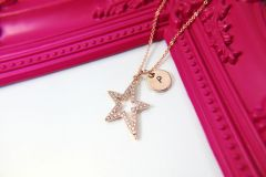 Rose Gold North Star Necklace, CZ Diamond Jewelry, Dainty Delicate Necklace