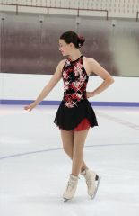Jerry's Chelsea Rose Figure Skating Dress