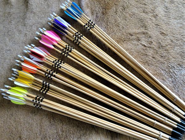Arrows for Lil Rapids Youth Bow 1/2 Dozen 24""