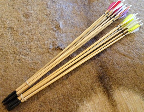 Arrows for Big Rapids Youth Bow 1/2 Dozen 28""