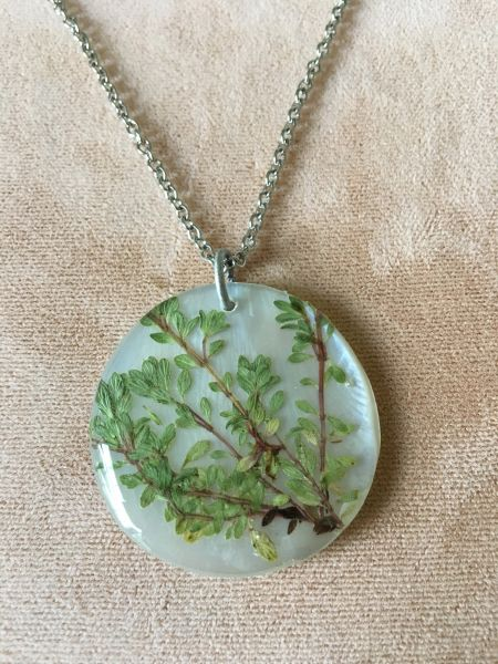Thyme Herb Leaves on Natural Shell Round Necklace