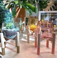 Terrarium Hand Blown Glass on Wooden Stand