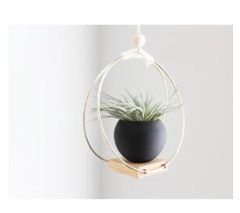 Handmade Ceiling Brass and Wood Plant Hanger