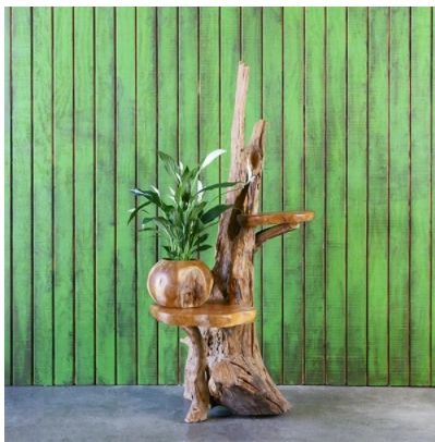 Drift Wood and Teak Plant Stand