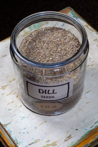 Dill Seeds - by the ounce