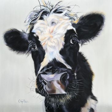 Black and white cow original oil painting by Carol Gillan
