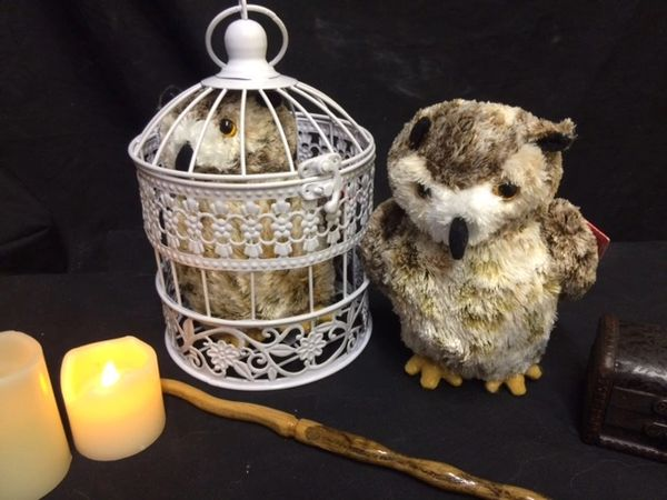 Mail Horned Owl, with or without cage