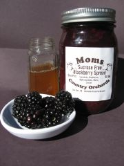 Sugar Free Blackberry Preserves